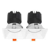 Đèn âm trần 2x10w mẫu F9